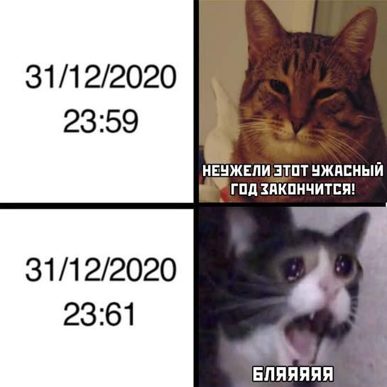 3027226.jpg