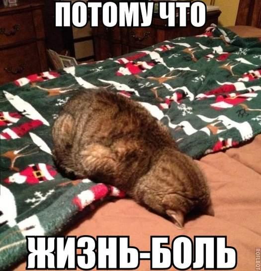 695118-OwJ8H.jpg