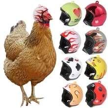Жесткий шлем для маленьких домашних животных (напр, куриц)