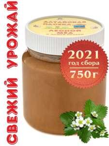 Мёд Лесной (СБОР 2021г), 750 г Алтайские Пасеки