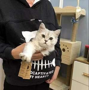 Толстовка с карманом для кота , собаки