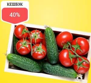 Возврат 40% баллами за покупку томатов и огурцов