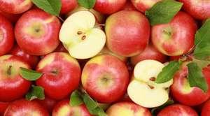 [СПБ] Яблоки во Вкустере