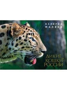 Книга Дикие кошки России: иллюстрированный авторский фотоальбом