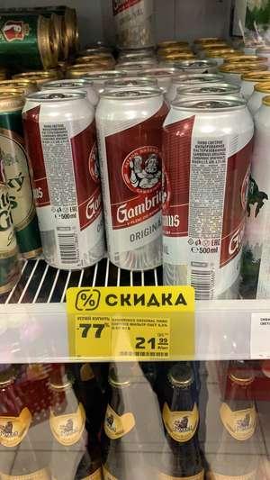 [Валуйки] Пиво Gambrinus