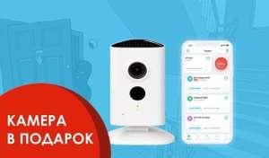 Бесплатная аренда ip-камеры при подключении виртуальной тревожной кнопки
