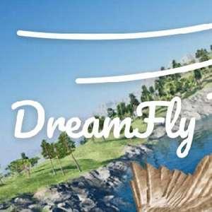 [PC] DreamFly VR бесплатно (см. описание)