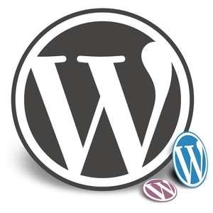 3 премиум-темы Wordpress БЕСПЛАТНО