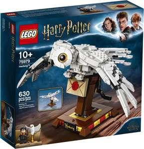 Конструктор LEGO Harry Potter 75979 Букля