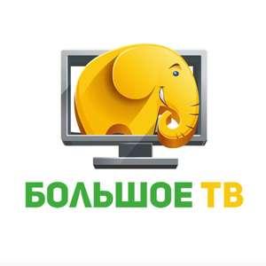 Матч Премьер и другие спортивные каналы на 1 месяц