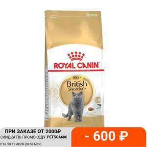Корм сухой для кошек Royal Canin British Shorthair, 4 кг (Tmall)