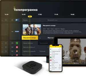 Beeline TV бесплатно на 3 месяца (без привязки карты)