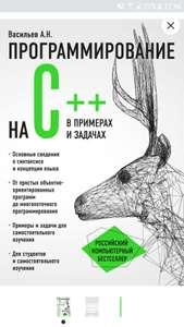 Н. А. Васильев Программирование на C++ в примерах и задачах