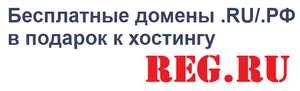 Бесплатный домен .Ru/.Рф на год при заказе хостинга от 12 месяцев (+40% скидка) от reg