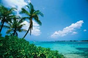 Airbnb приглашают волонтеров на Багамы