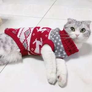 Свитер для кота!