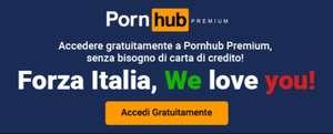 Месяц премиум-подписки на PornHub (через VPN)